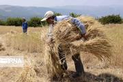 سند راهبردی توسعه بخش کشاورزی استان اردبیل تدوین شد