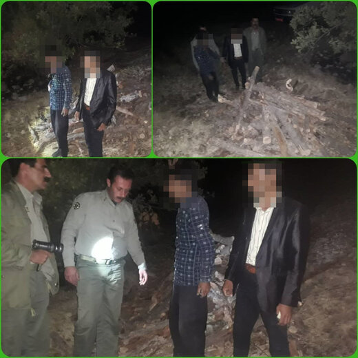 متخلفان قاچاق و قطع چوب جنگلی در چهارمحال و بختیاری دستگیر شدند