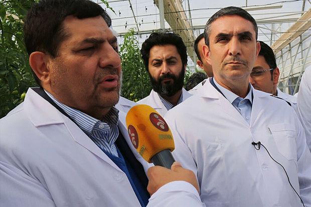 کاهش ۵۰۰ میلیون دلاری واردات دارو به کشور در دستور کار ستاد اجرایی فرمان امام است