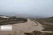 سقوط در کانال آب و تخریب زیرساخت ها نتیجه سیلاب در ایلام