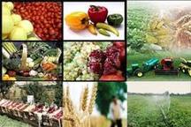 بررسی نقش مروجان در تولید محصول سالم