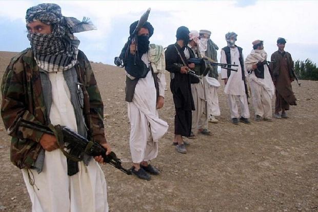 طالبان کماندوهای افغانستانی را پس از تسلیم شدن قتل عام کرد + فیلم