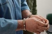 سارق حرفهای با ۱۱ فقره سرقت در مهولات دستگیر شد