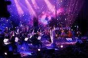 آخرین کنسرت ها قبل از شروع جشنواره موسیقی فجر