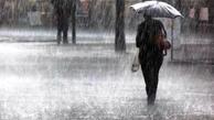 ۲ سامانه پرقدرت بارشی وارد بوشهر میشود