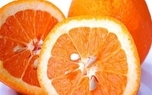 تهیه پروتئین از ضایعات هسته پرتقال