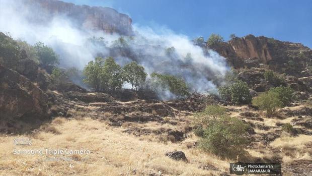 کوهدشت همچنان در آتش/ اصرار مسئولین بر کتمان!+ فیلم