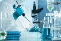 340 محصول دارویی در شرکت های دانش بنیان تولید شد