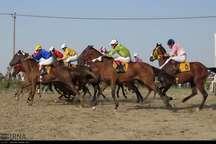 63 راس اسب در هفته دوم کورس پاییزه آق قلا مسابقه دادند