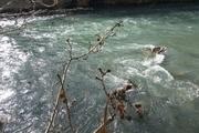 کاهش خطر سیلاب رودخانه اشتهارد با ورود دستگاه قضائی