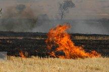 پایگاه های مقابله با آتش سوزی در مزارع بیله سوار ایجاد شد