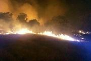 اغلب آتشسوزیهای جنگلهای خوزستان عمدی است