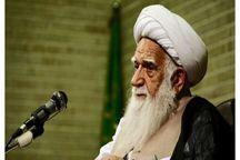 آیتالله محمد آصف محسنی از مدافعان اندیشه وحدت اسلامی بود