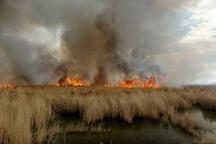 اعزام ۲ بالگرد به بخش عراقی هورالعظیم برای مهار آتشسوزی