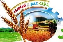 پارک ملی تخصصی کشاورزی کشور راه اندازی خواهد شد