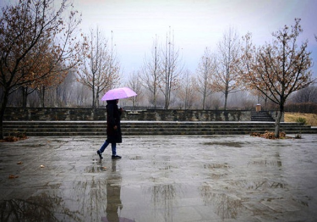 بارش باران در شیروان 61 درصد افزایش یافت