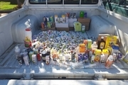 ۷۰ قلم داروی دامی قاچاق غیرمجاز در بیجار کشف شد