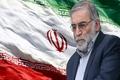 جزییات عجیب از ترور شهید فخریزاده