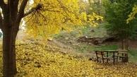 بوستان جنگلی سرخهحصار به «اکو پارک» تبدیل می شود