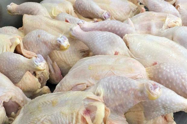 توزیع روزانه 50 تن گوشت مرغ در قزوین هفته آینده آغاز می شود