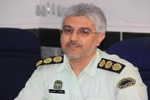 51 سارق و خرده فروش مواد مخدر در استان مرکزی دستگیر شدند