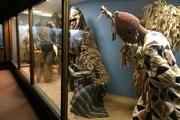 استخوانهای بزرگترین دایناسور جهان را در کدام موزه ببینیم؟+ تصاویر