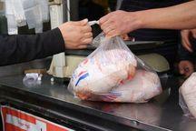 ذخیرهسازی گوشت مرغ برای تنظیم بازار در استان اردبیل