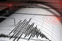 زلزله بندرعباس را لرزاند