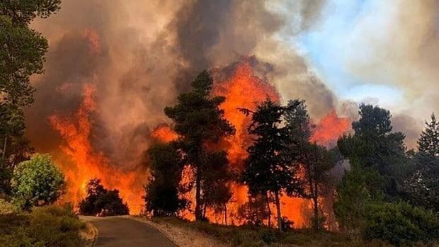 آتش سوزی مهیب در قدس اشغالی؛توقف حرکت قطارها و تخلیه شهرک نشینان