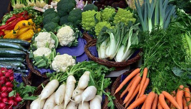 تأثیر مصرف سبزیجات تخمیر شده در کاهش مرگ و میر کرونا