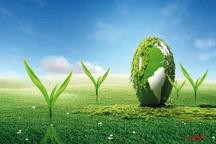 12 طرح نیمه تمام منابع طبیعی هرمزگان به بخش خصوصی واگذار می شود