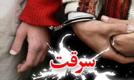 شگرد جدید سارقان  جیببُری زیر تابوت  اعتراف سارقان به 26 فقره سرقت