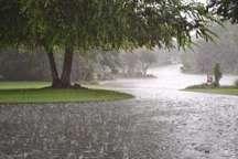 زخمه مرهم باران مترنم، بر خشک زخم های بلوطستان های ایلام
