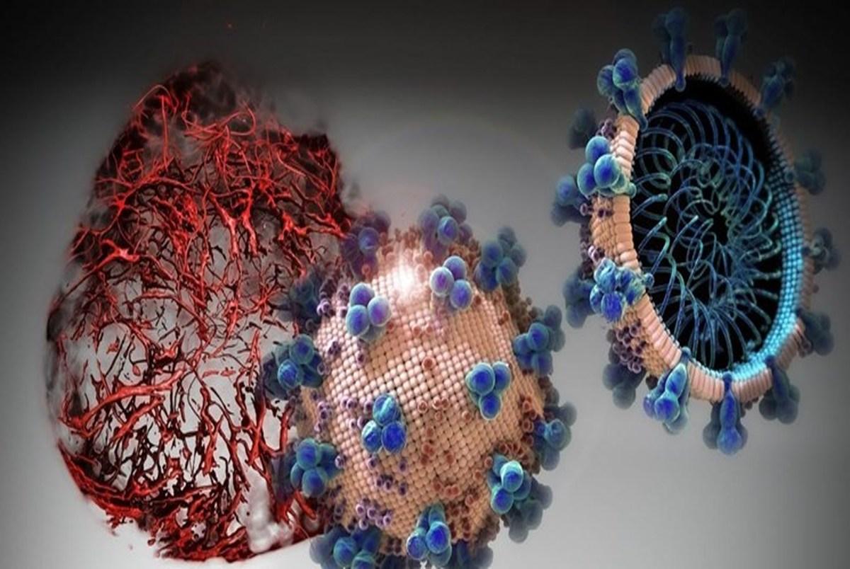 جهش ویروس کرونا چگونه اتفاق میافتد؟