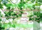 دعای روز هشتم ماه مبارک رمضان + صوت،متن و ترجمه