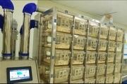 راه اندازی سیستم نگهداری موش های آزمایشگاهی در موسسه رازی