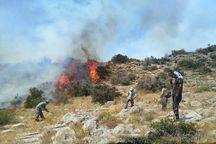 آتش در ارتفاعات بخش خفر جهرم خاموش شد