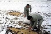 رنگ سپید مهربانی بر برف مارگون نقش بست
