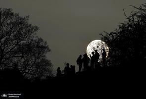 منتخب تصاویر امروز جهان- 13 فروردین 1400