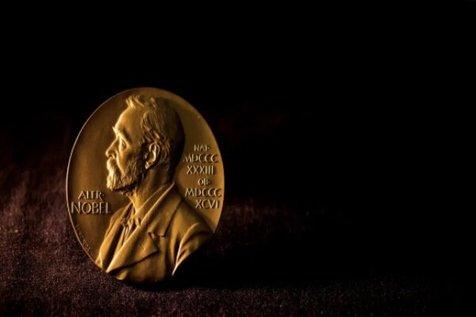 انتخاب برندگان نوبل به چه نحوی است؟