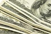 اظهارات رییس سابق بانک مرکزی درباره گرانی دلار