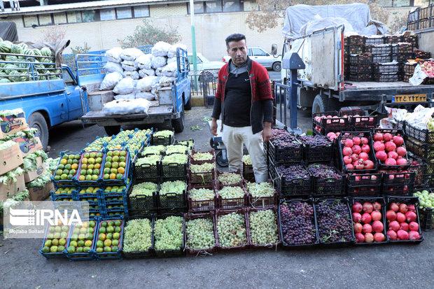 میدان میوه و تره بار یاسوج آماده افتتاح است