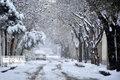 بارش سنگین برف بهاری در روستاهای قم