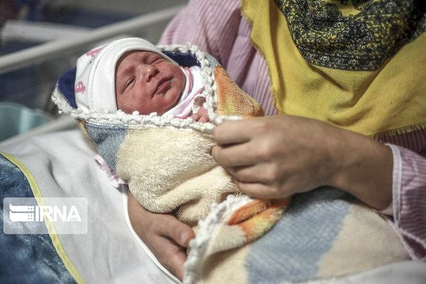 امیرعلی و فاطمه محبوبترین اسامی نوزادان در مشهد هستند