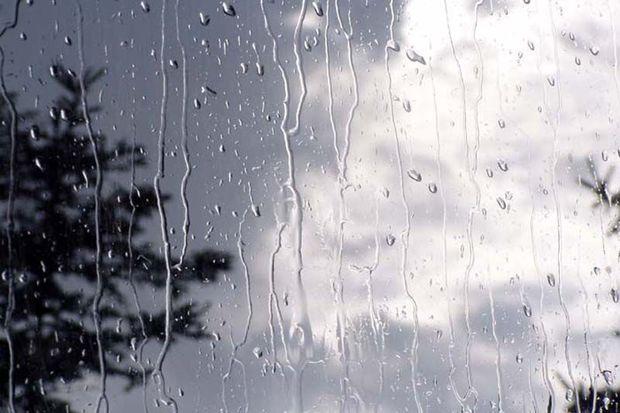 بهار کردستان با کاهش محسوس بارشها سپری میشود
