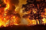 100 هکتار از جنگلهای گچساران سوخت/ ادامه حریق به علت نبود بالگرد