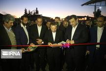 احیای نامهای نوستالژیک، دستاورد شعار رونق تولید در صنعت مازندران