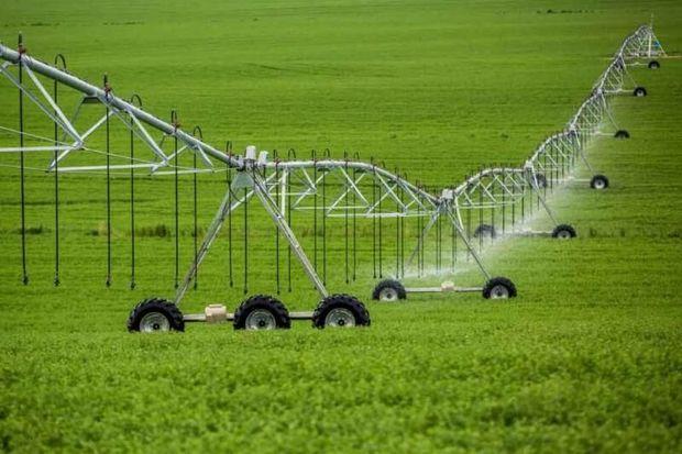 ذخیره سازی محصولات کشاورزی در کشور