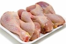 تخلف در توزیع مرغ های تعاونی در شیراز تکذیب شد