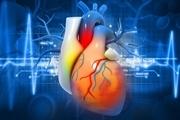 اصلی ترین علل ابتلا به بیماری های قلبی